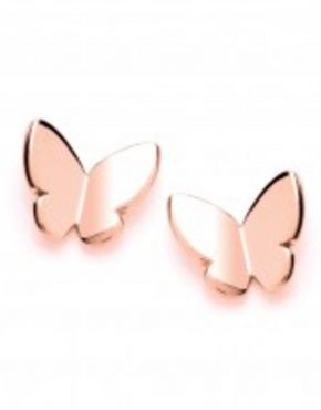 Rose_Gold_Finish_Butterfly_Stud_800x
